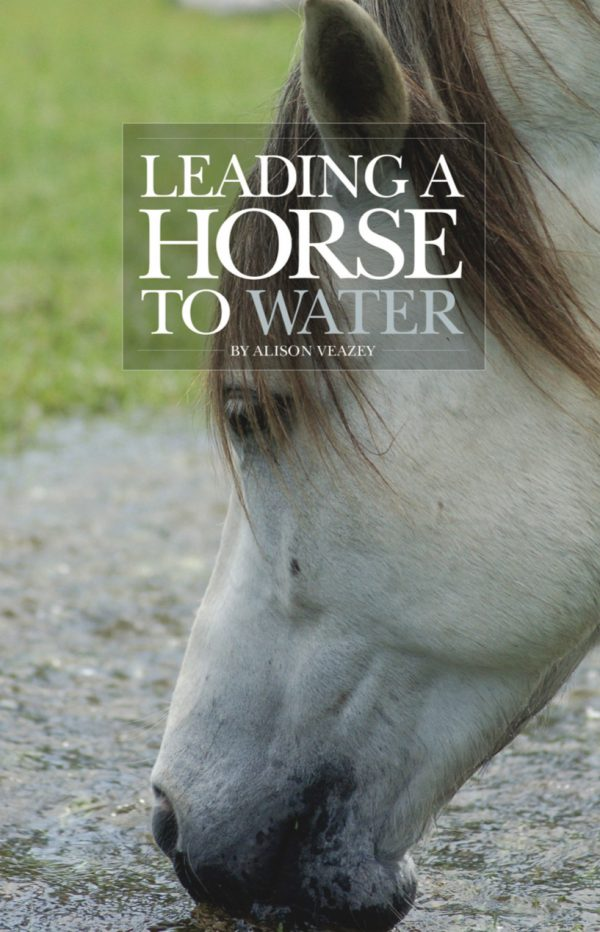 Leading a Horse to Water